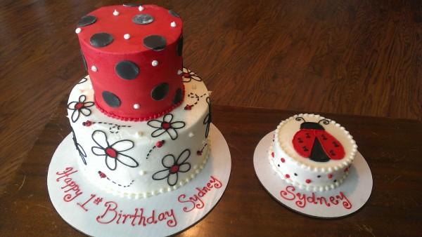 Lady Bug First Birthday Smash Cake