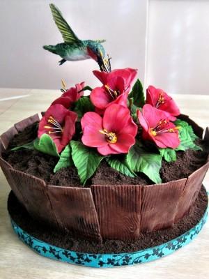 Marvelous 10 Hummingbird Decorated Birthday Cakes Photo Rice Krispie Funny Birthday Cards Online Necthendildamsfinfo