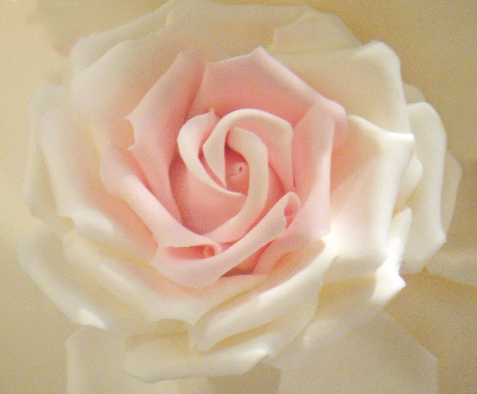 10 Sugar Roses For Cakes Photo Pastel Pink Rose Cake Wedding