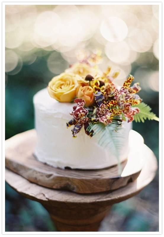 12 Simple Round Wedding Cakes 1 Layer Photo Simple Single Layer