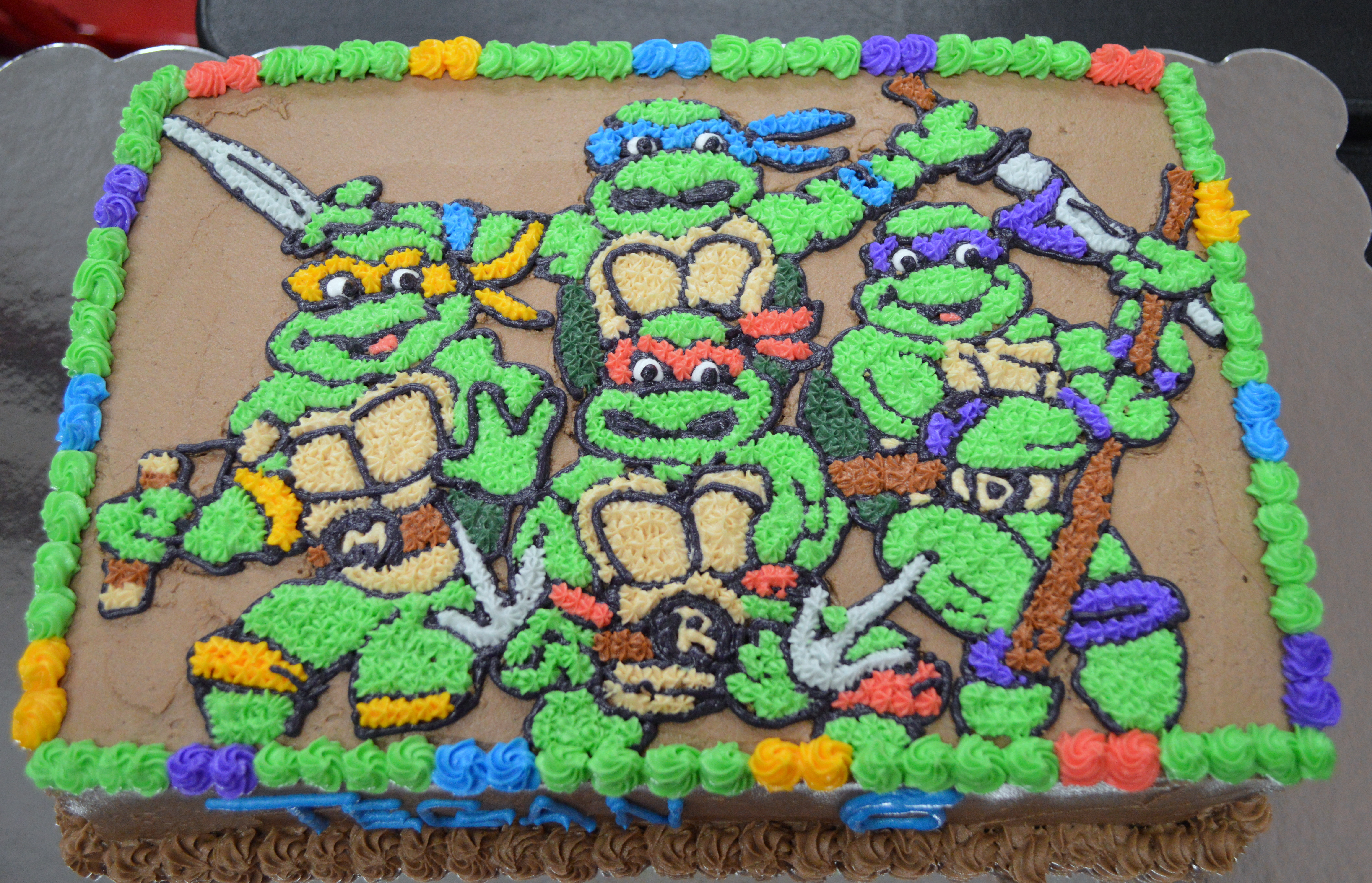 Teenage Mutant Ninja Turtle Sheet Cake Antaexpocoaching