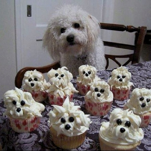 10 Dog Shaped Wedding Cakes Photo Birthday Cakes Shaped Like Dogs