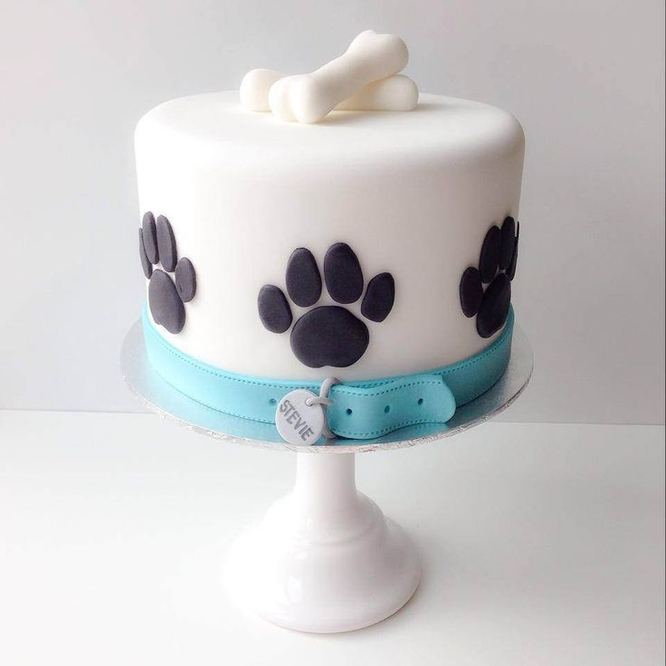 6 Made For Dogs Dog Cakes Photo