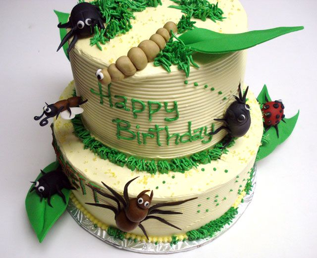 Astounding 13 Bugs And Insects Cakes Photo Insect Birthday Cake Snake And Funny Birthday Cards Online Overcheapnameinfo