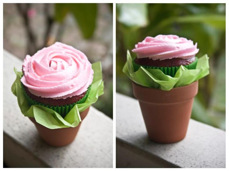 13 Flower Pots Wedding Cupcakes Photo - Flower Pot Cupcake Bouquet ...