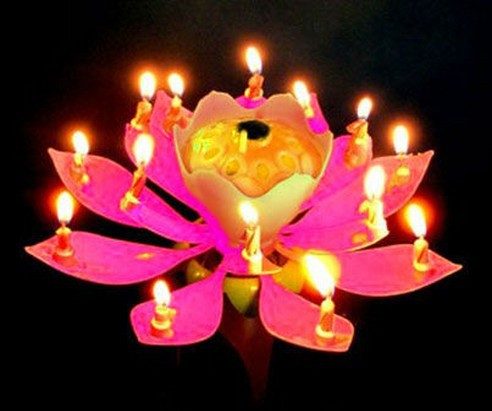 Music Birthday Candle Lotus Flower