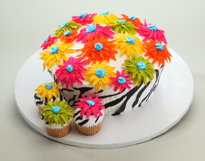 Pleasing 12 Albertsons Bakery Birthday Cakes Pictures Photo Albertsons Funny Birthday Cards Online Sheoxdamsfinfo