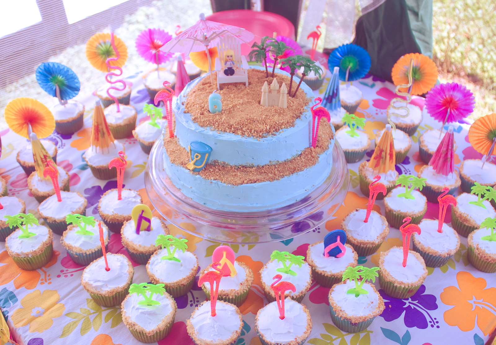 Giant Food Bakery Birthday Cakes