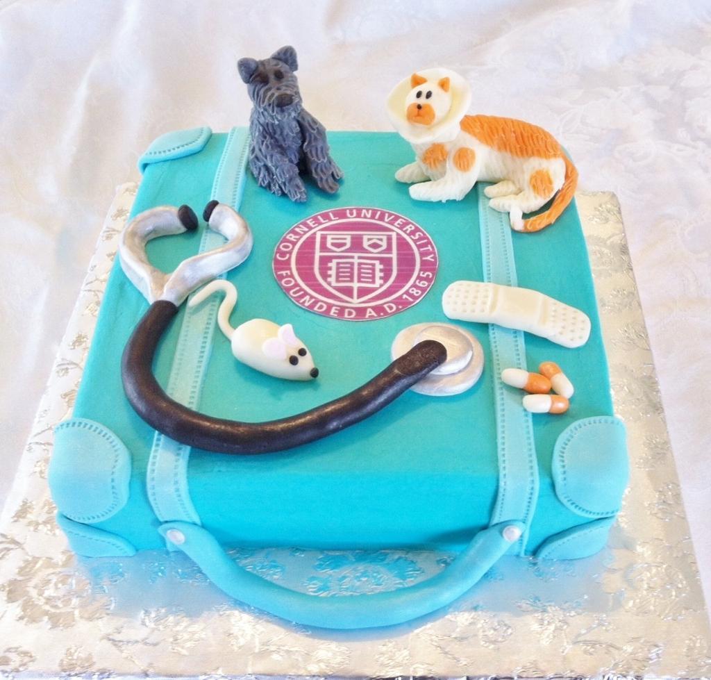 10 Veterinary Birthday Cakes Photo