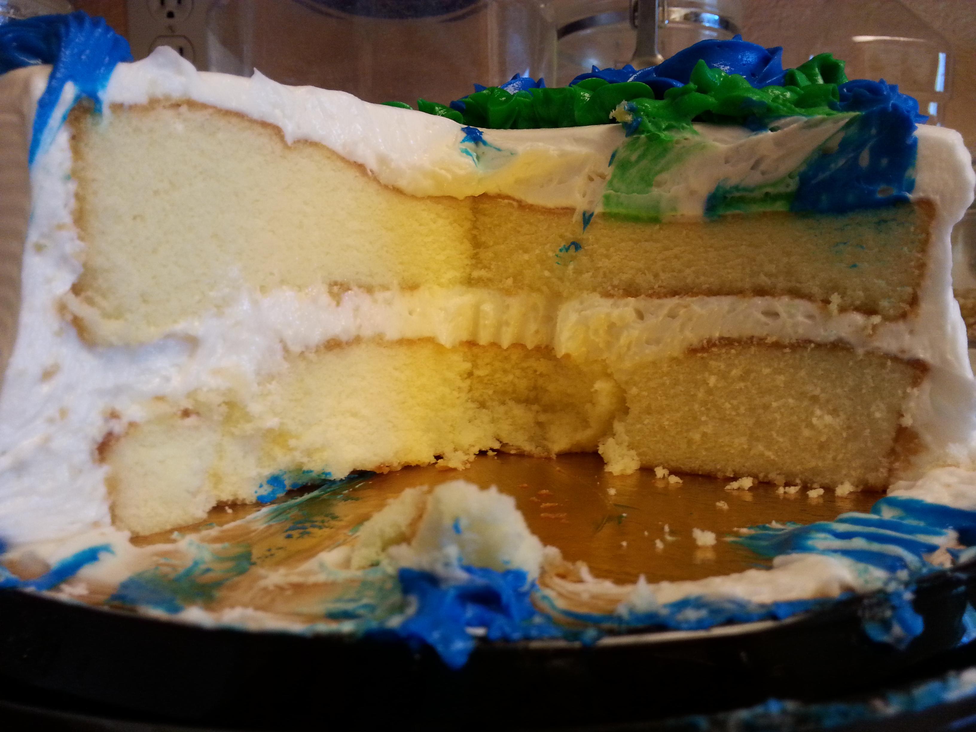 10 Safeway Birthday Cakes Animal Photo