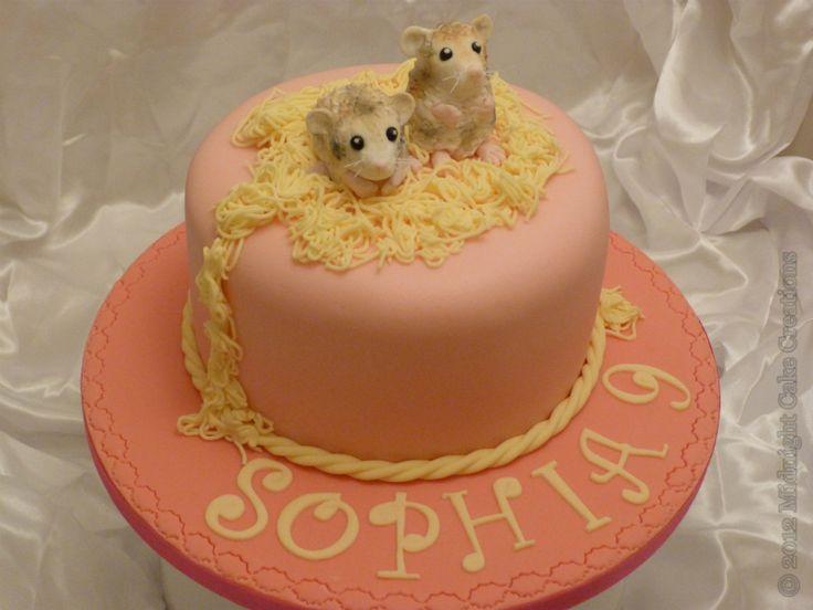 12 Hamster Bday Cakes Photo Hamster Cake Hamster Cake And Hamster