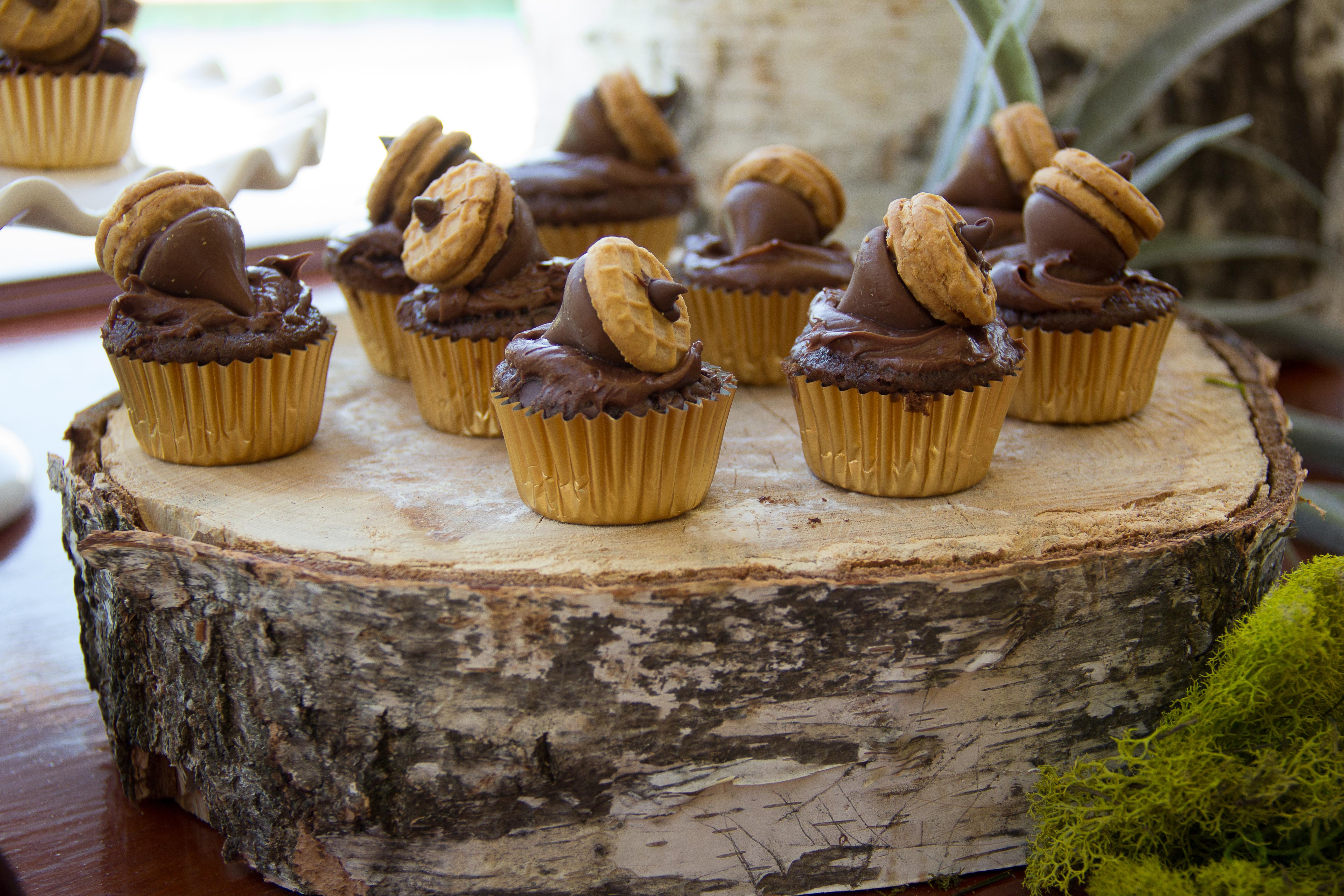 10 Woodland Baby Shower Cupcakes Photo Woodland Baby Shower Cake