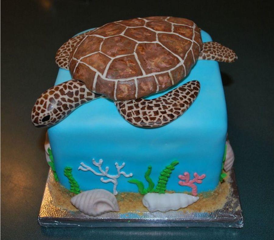 Terrific 12 Sea Turtle Themed Cakes Photo Sea Turtle Cake Sea Turtle Personalised Birthday Cards Veneteletsinfo