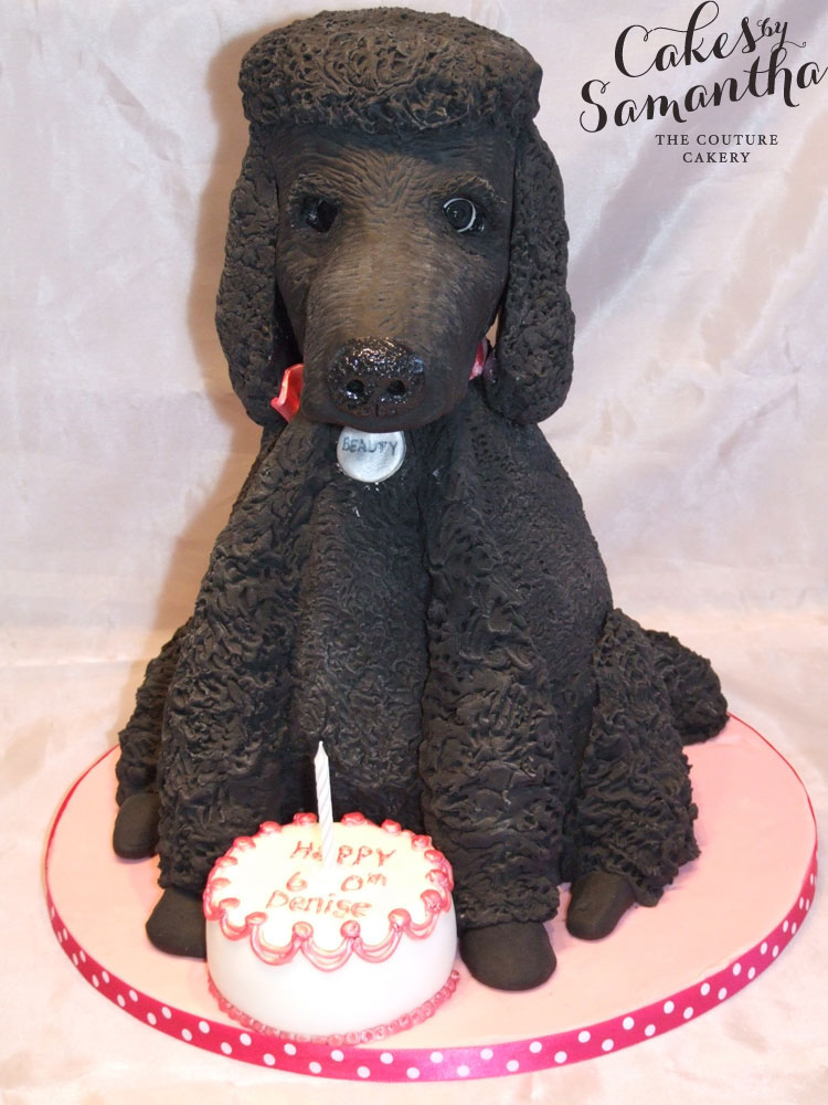 Wondrous 10 Poodle Shaped Birthday Cakes Photo Poodle Cake Ideas Pink Funny Birthday Cards Online Aeocydamsfinfo