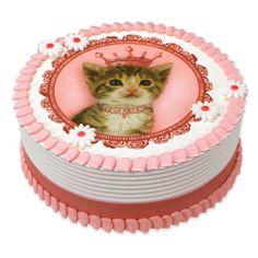 Groovy 9 Kitten Cakes For Boys Photo Kitten Birthday Party Cake Cat Funny Birthday Cards Online Necthendildamsfinfo