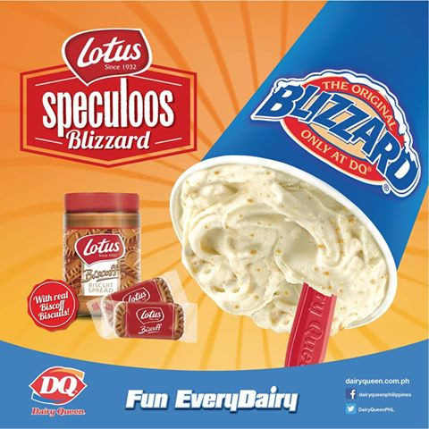 Dairy Queen Blizzard Cakes Flavors