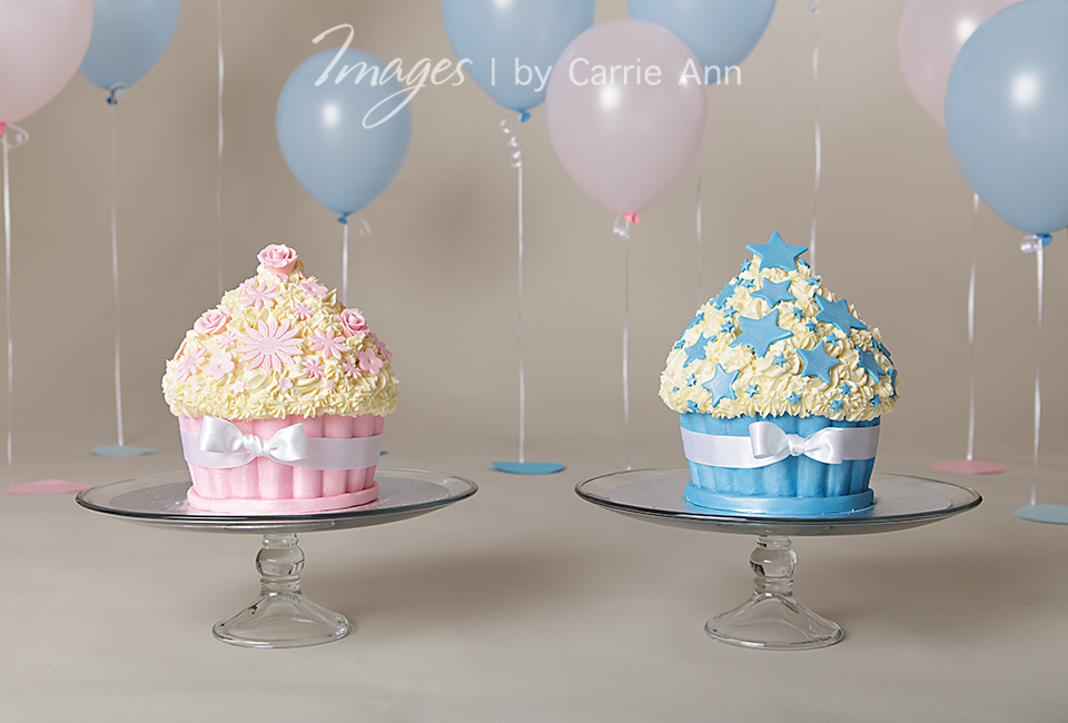 13 Simple Birthday Cakes For Twins Photo Happy Birthday Twins Cake