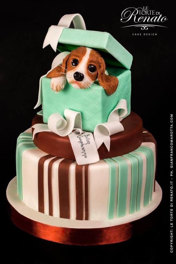Wondrous 6 Custom Dog Birthday Cakes Photo Cat And Dog Birthday Cake Dog Funny Birthday Cards Online Overcheapnameinfo