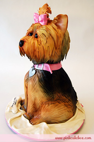 Yorkie Terrier Dog Birthday Cakes