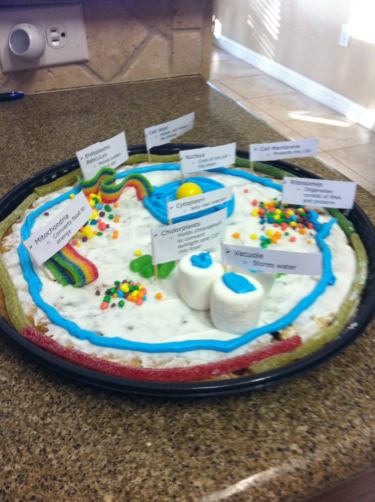 Plant cell diagram homemade cookie cake wiring 13 city cell project cookie cakes photo plant cell cookie cake animal cell vs plant cell plant cell diagram homemade cookie cake ccuart Choice Image