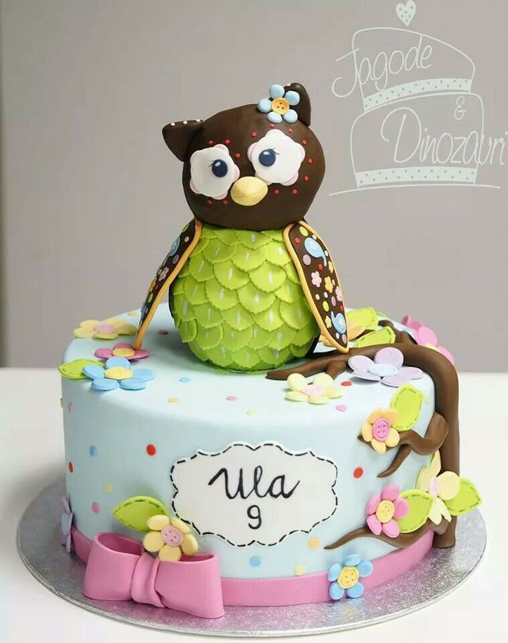 13 Creative Owl Decorated Cakes On Pinterest Photo DIY Owl Cake