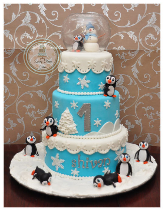 Cool 9 January Winter Wonderland Birthday Cakes Photo Winter Funny Birthday Cards Online Eattedamsfinfo