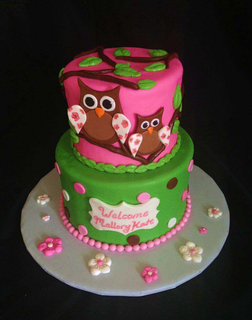 11 Baby Girl Owl Cakes Photo Baby Girl Owl Birthday Cake Owl Baby