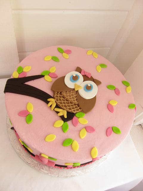 11 Cute Owl Shaped Cakes Photo Owl Birthday Cake Easy Owl