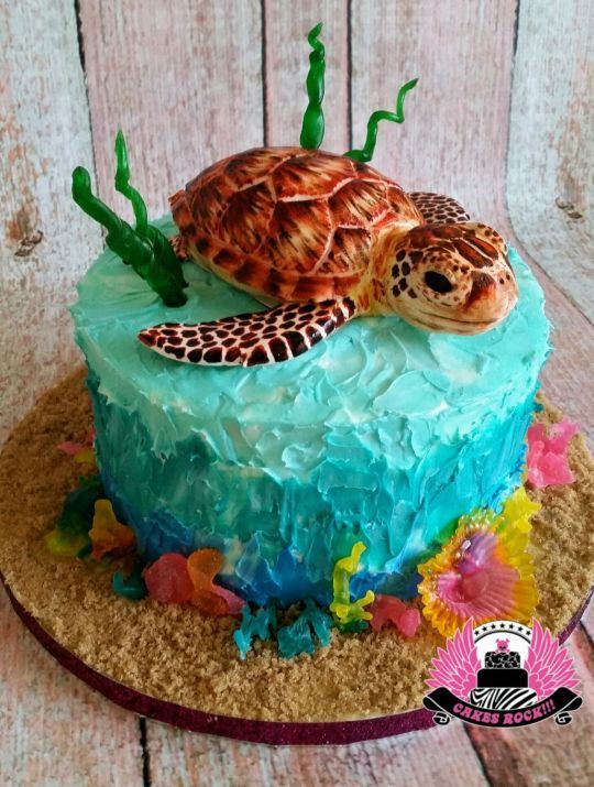 Remarkable 9 Turtle Birthday Cakes For Janet Photo Happy Birthday Janet Funny Birthday Cards Online Alyptdamsfinfo