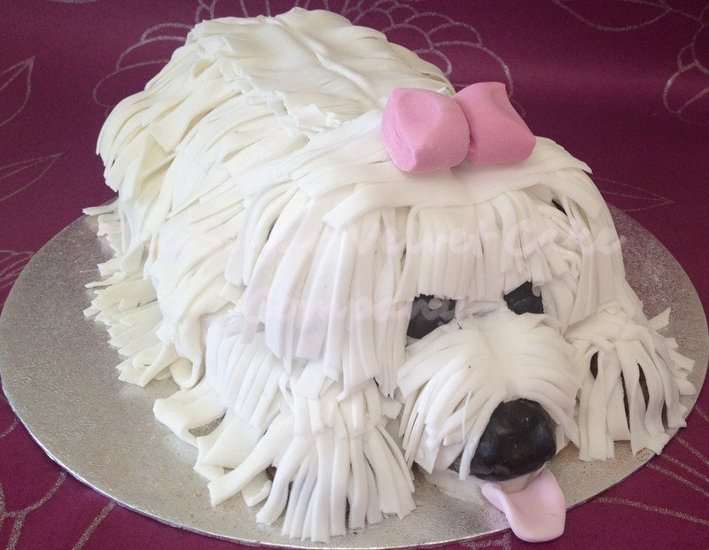 7 Dog Birthday Cakes To Order Photo