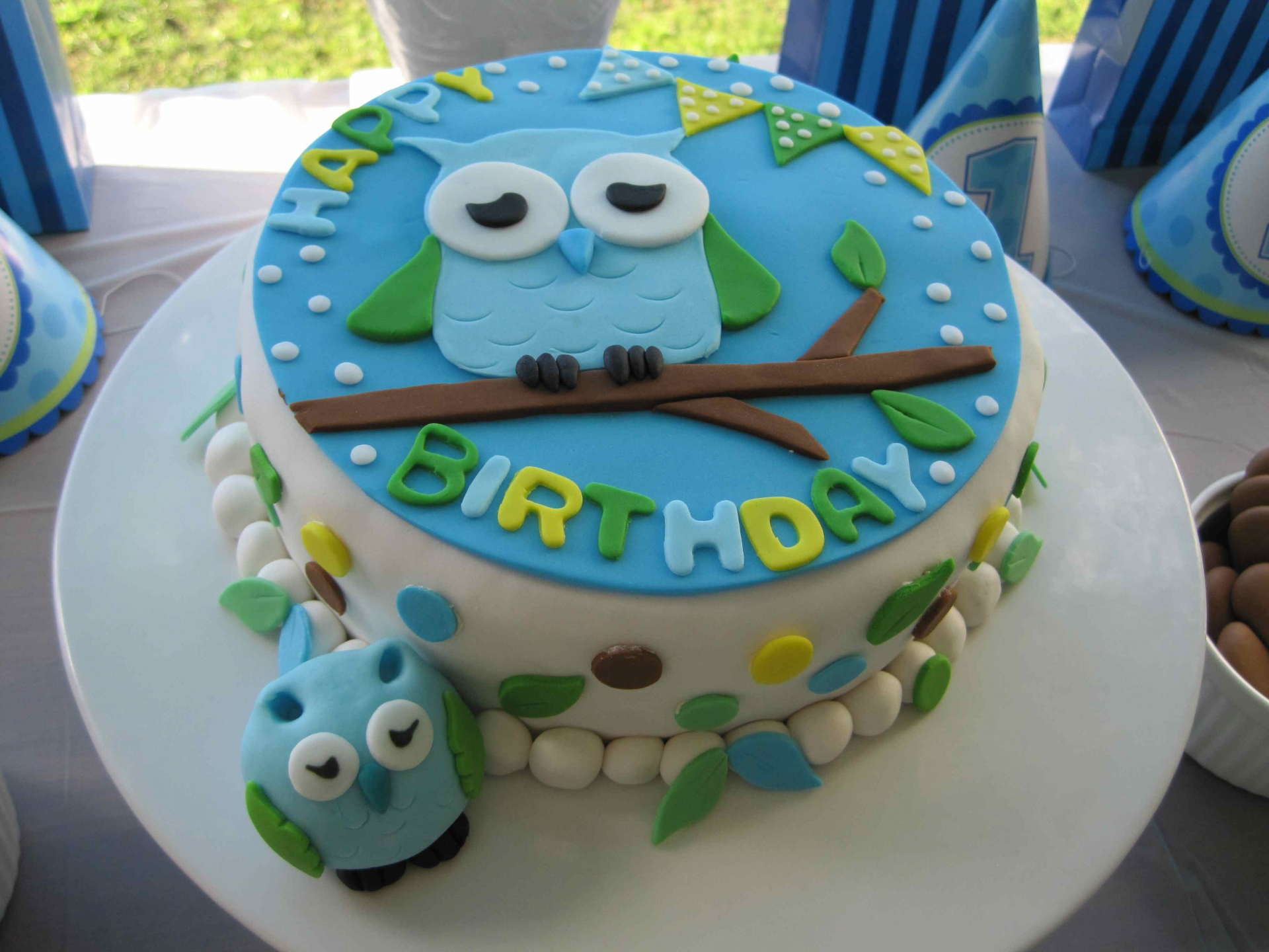 12 Owl Birthday Cakes For Boy Photo Owl Themed Birthday Cake Boy