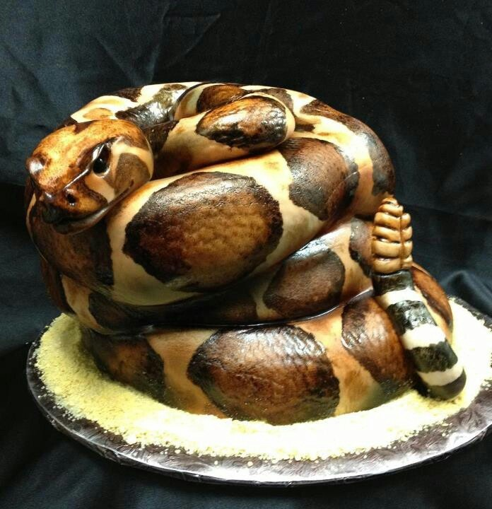 8 Amazing Snake Cakes Photo