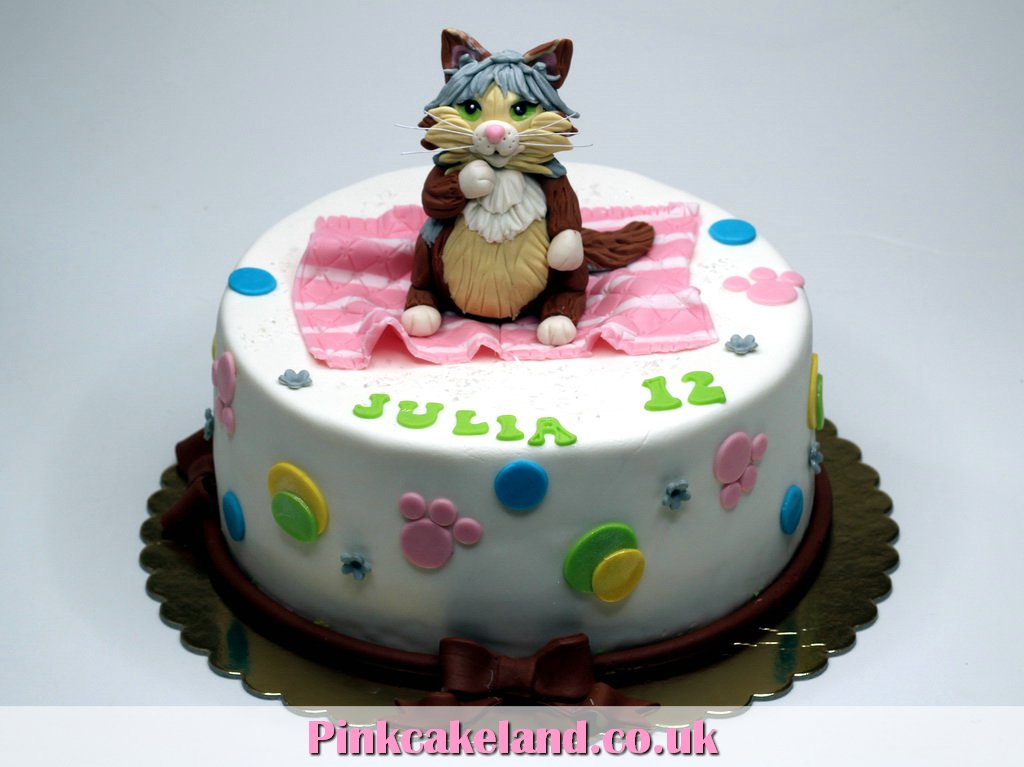 12 Name With The Cat Birthday Cakes Photo Grumpy Cat Birthday Cake