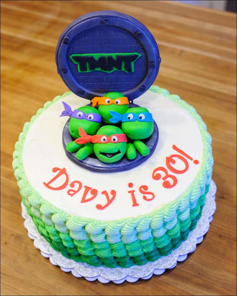 8 TMNT Circle Buttercream Cakes Photo Teenage Mutant Ninja Turtle
