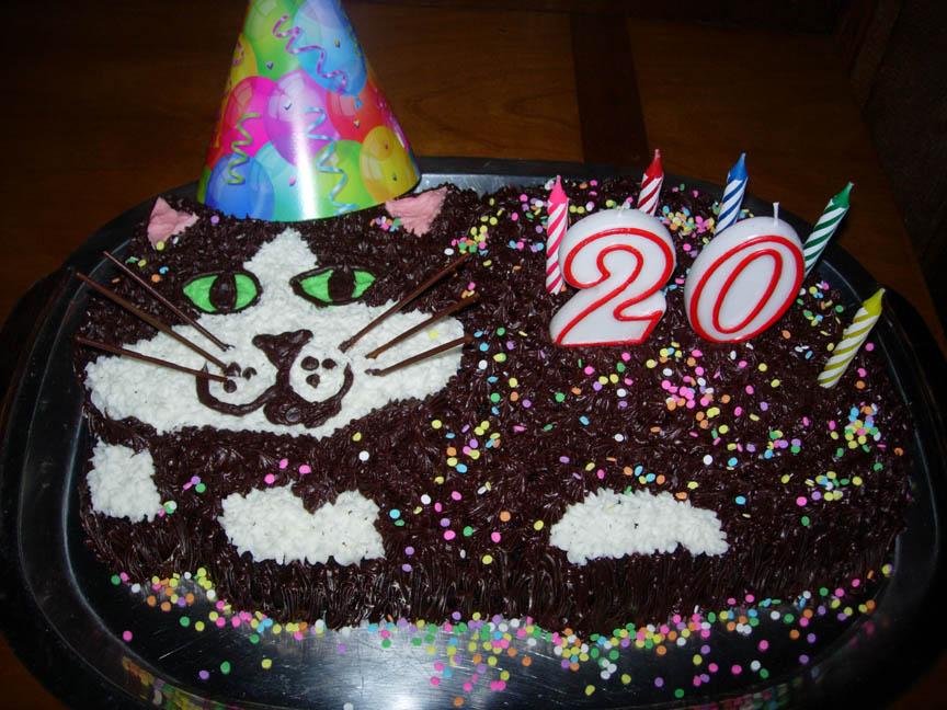 11 Happy 20th Birthday Cakes On Facebook Photo Happy 20th Birthday