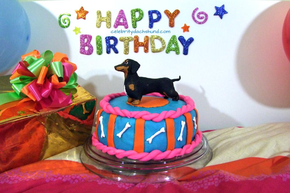 Super 12 Birthday Cakes Images Dachshund Dogs Photo Dachshund Happy Funny Birthday Cards Online Unhofree Goldxyz