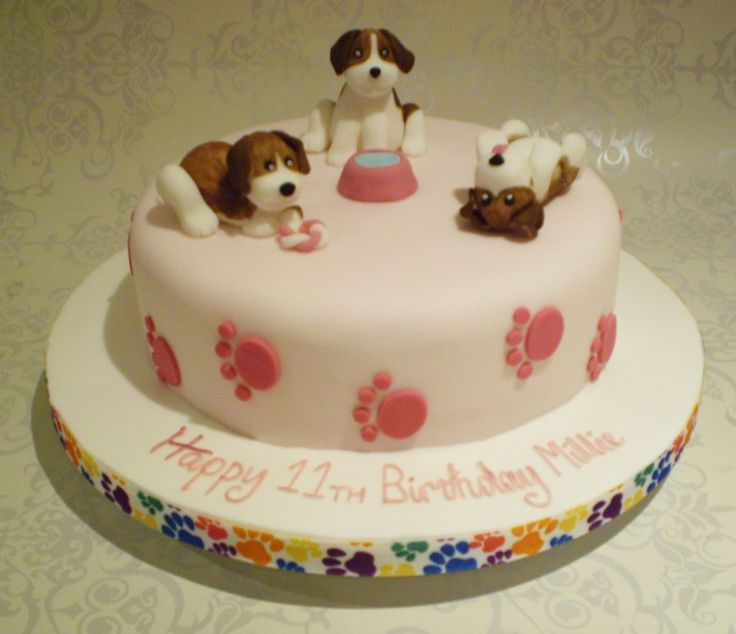 6 Birthday Cakes For Dogs In MN Photo