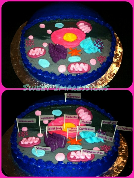 13 Cells Cakes Designs Photo 3d Plant Cell Model Cake Plant Cell