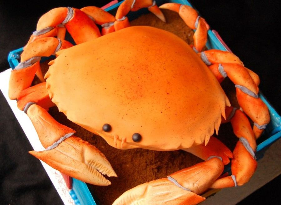 Incredible 13 Cakes Shaped Like Crabs Photo Crab Shaped Birthday Cake Funny Birthday Cards Online Necthendildamsfinfo