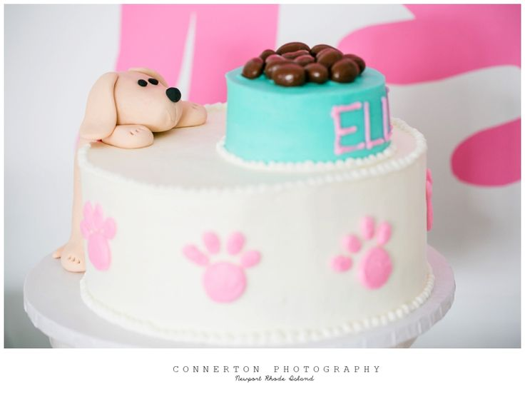 Puppy Dog Birthday Cake Ideas For Girls