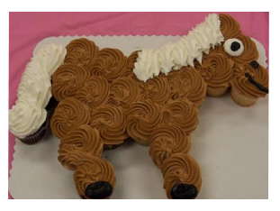 Horse Themed Birthday Party Ideas Party City Hours