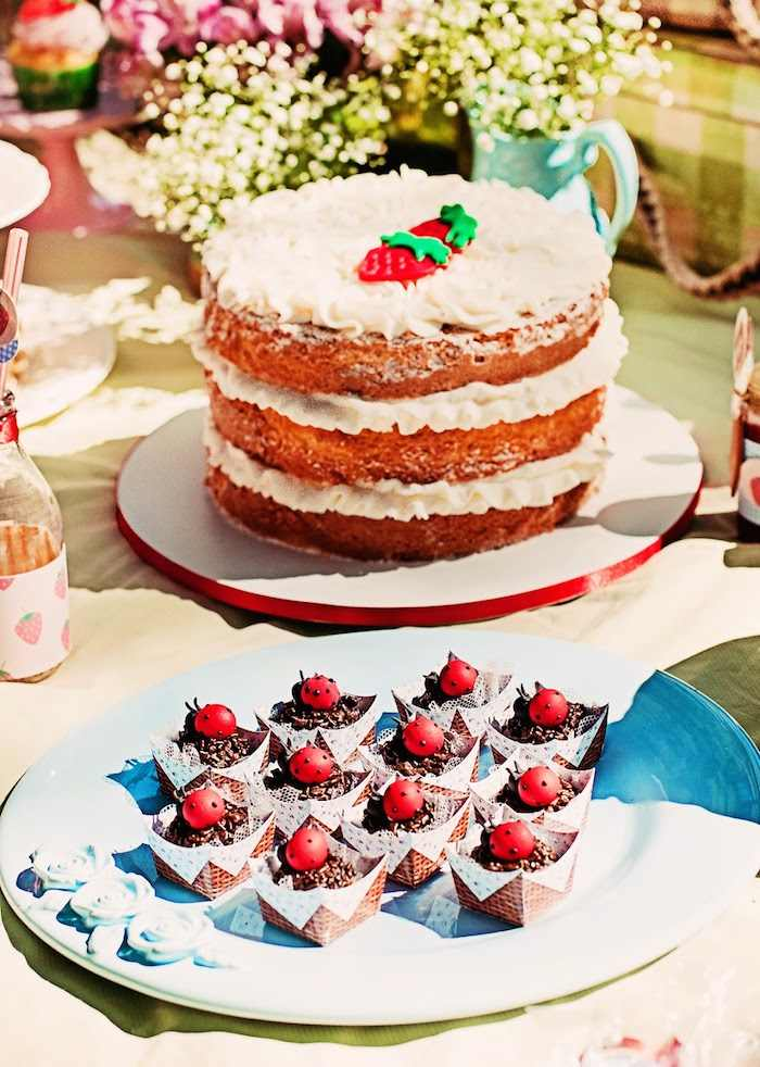 11 Summer Picnic Cakes Ideas Photo Summer Picnic Birthday Party