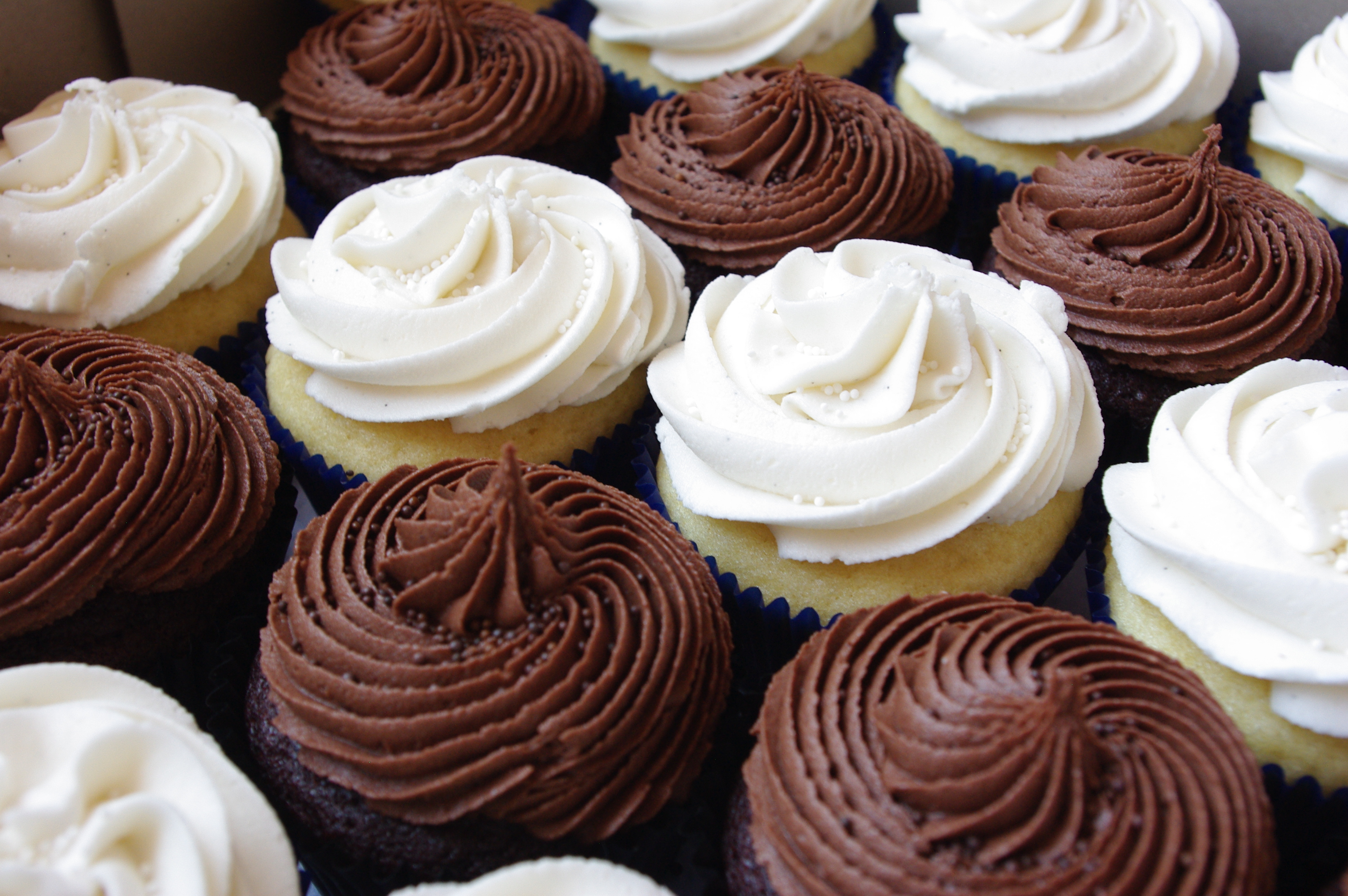 8 Photos of Chocolate Vanilla Cupcakes