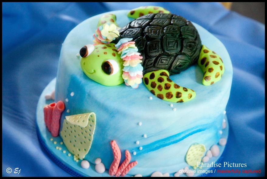 6 Turtle Themed Birthday Cakes Photo Sea Turtle Cake Sea Turtle