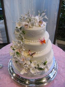6 Photos of Fab Cakes Sri Lanka Butterfly