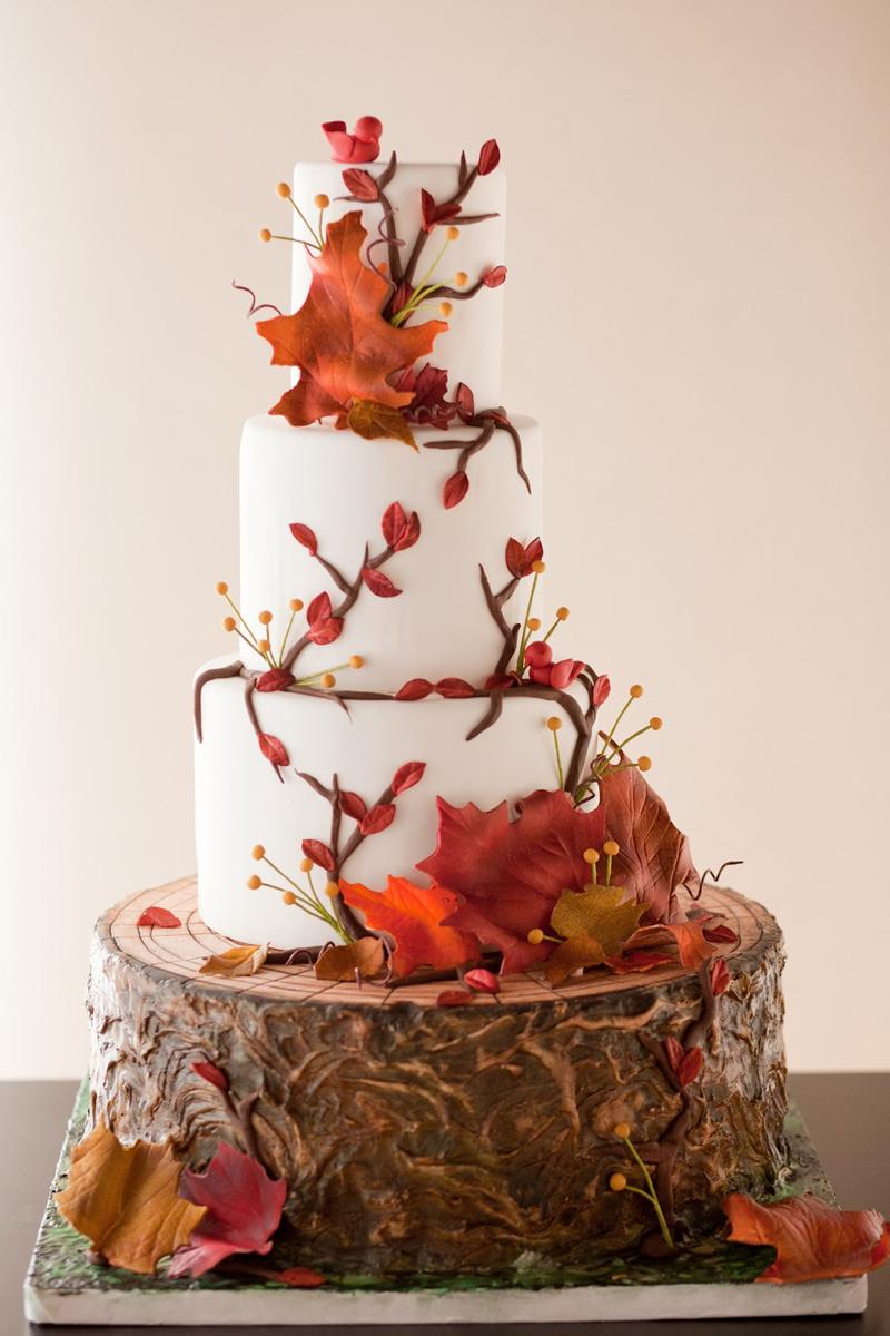 10 Photos of Gorgeous Fall Cakes