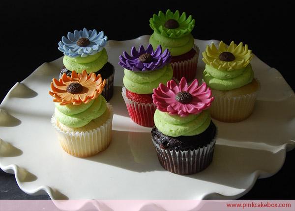 10 Photos of Gerber Daisy Buttercream Cupcakes