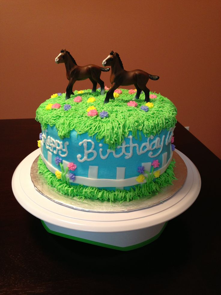 12 Horse Themed Birthday Cakes For Women Photo Horse Themed