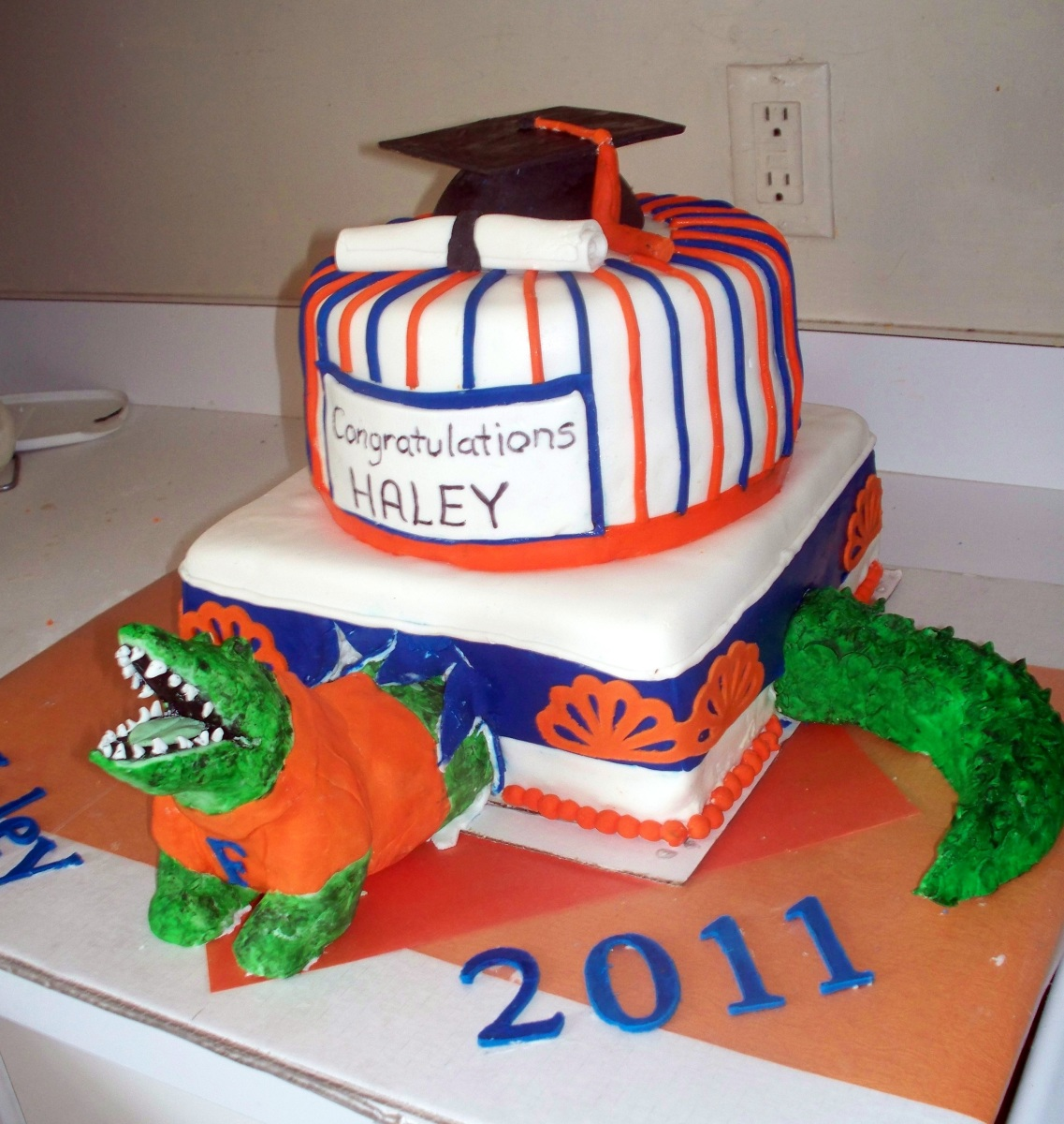 Florida Gator Cake Decorations