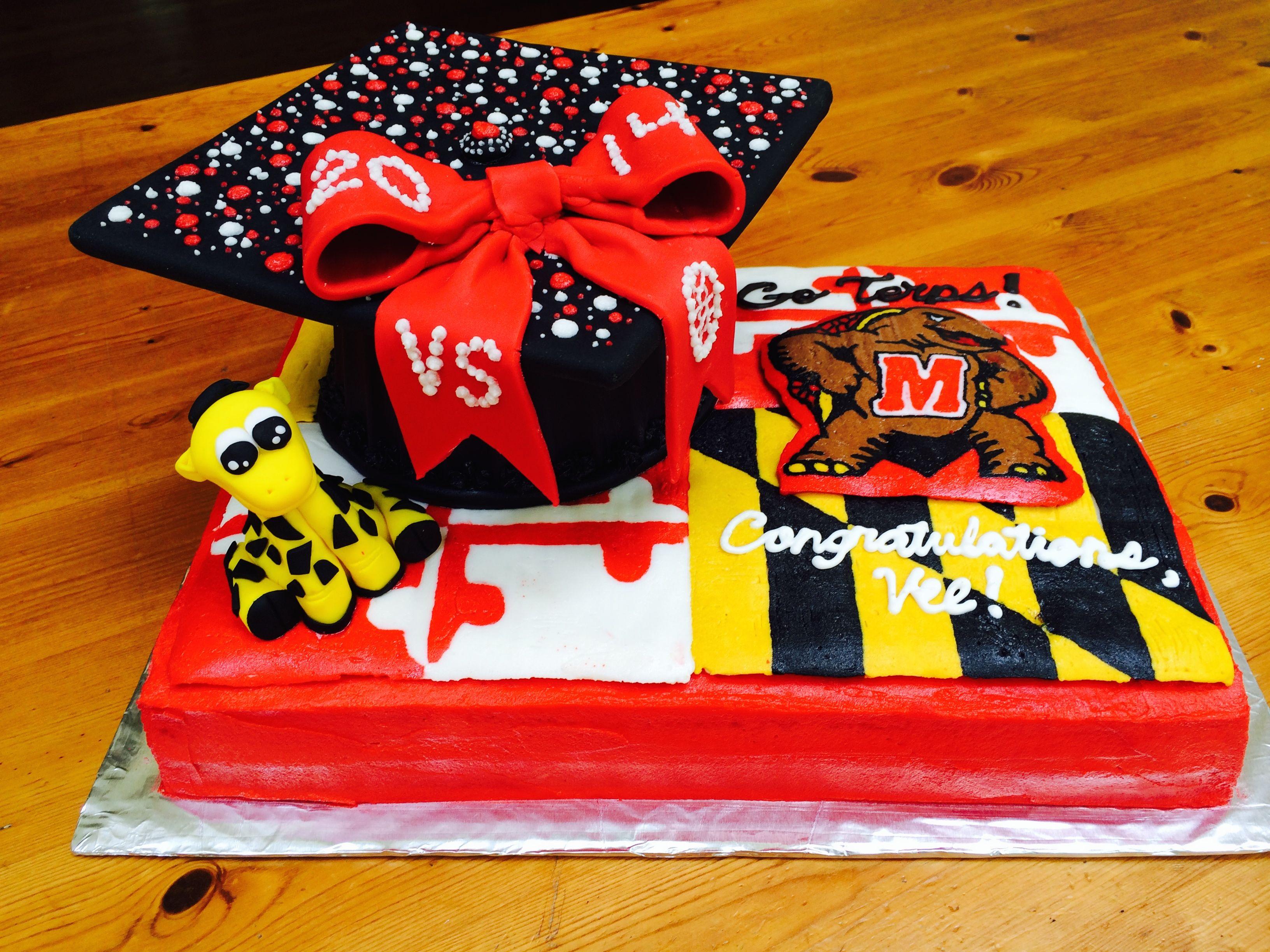 8 Photos of MD Graduation Cakes